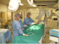 心臓・循環器内科プログラム