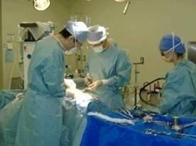 外科プログラム